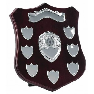 Champion Annual Shield Silver