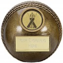 Premier 3D Cricket Ball